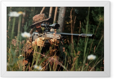 Sniper takes aim from a position. In the field of chamomile Framed Poster