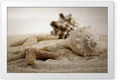 seashells on the sand Framed Poster