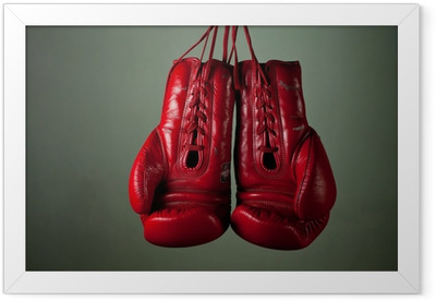 Boxing gloves hanging from laces on a grey background Framed Poster