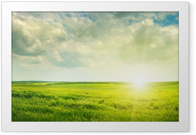 green field and sunrise Framed Poster