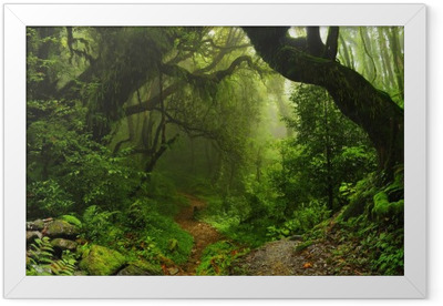 Nepalese jungle forest Framed Poster