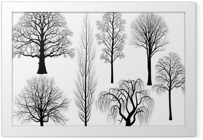 Collection of trees in black Framed Poster
