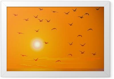 Flying birds against orange sunset. Framed Poster