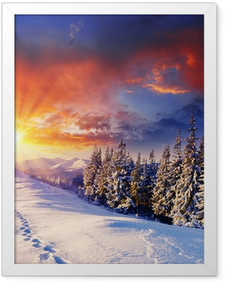 winter Framed Poster