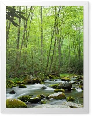 Jungle stream Framed Poster