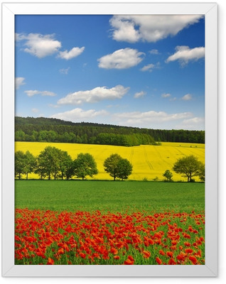 spring landscape with red poppy field in the Czech Republic Framed Poster