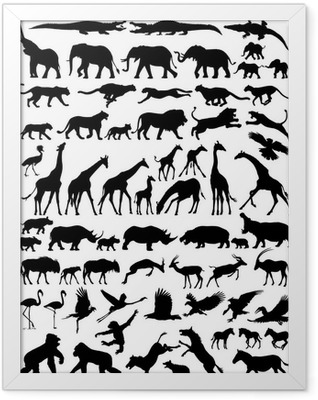 African wild animals vector silhouette Framed Poster