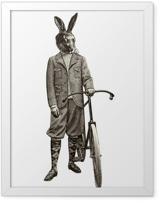 Lapin à vélo Framed Poster