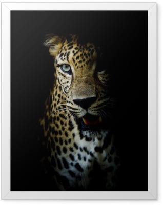 Leopard portrait Framed Poster