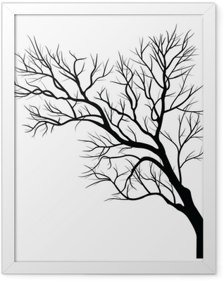 Trees with dead branch Framed Poster