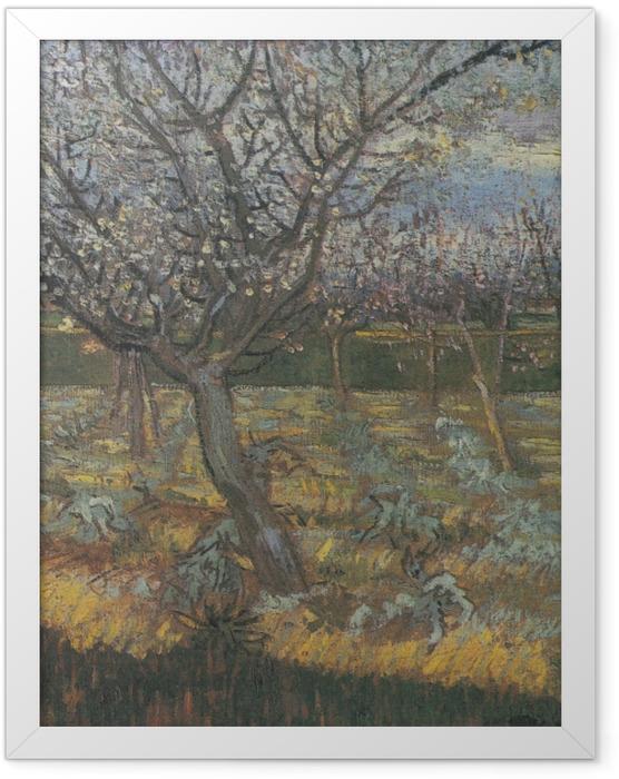 Plakat w ramie Vincent van Gogh - Kwitnący sad z morelowymi drzewami - Reproductions