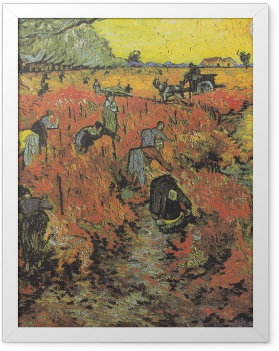 Poster en cadre Vincent van Gogh - Les vignes rouges d'Arles - Reproductions