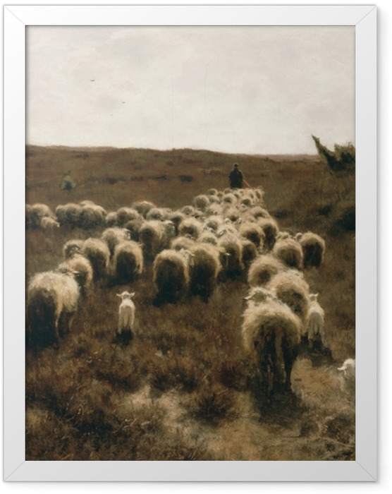 Poster en cadre Anton Mauve - Le retour du troupeau, Laren - Reproductions