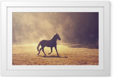 Ingelijste Poster Mooie ochtend zonlicht mistige weide met binnenlands bruin paard.