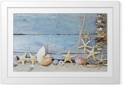 Poster en cadre Fond maritime: Pêche, de coquillages et étoiles de mer