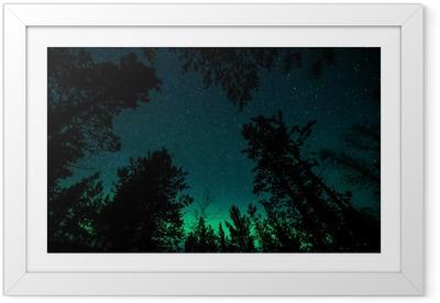 Poster in Cornice Aurora boreale sopra gli alberi in Norvegia