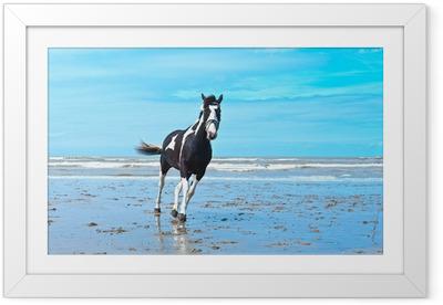 Plakat w ramie Koń
