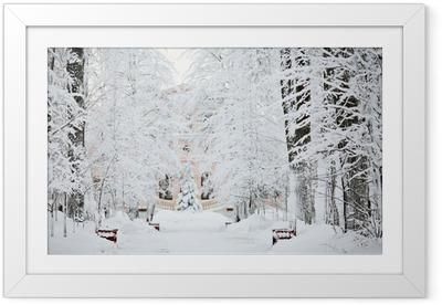 Poster en cadre Forêt d'hiver froid paysage neige