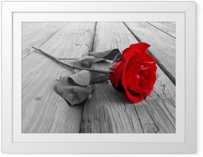 Poster en cadre Rose sur bois pc