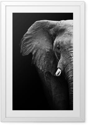 Ingelijste Poster Elephant Close Up