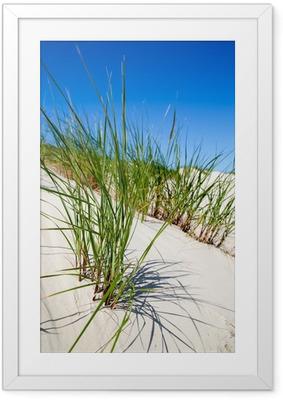 Gerahmtes Poster Dünengrass in den Dünen von Norderney, Deutschland