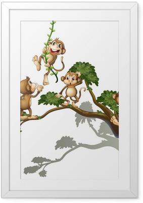Plakat w ramie Drzewo z czterech małp