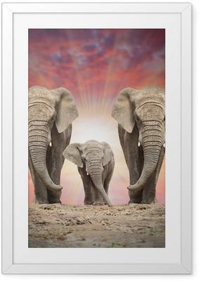 Poster i Ram Afrikansk elefant familj på vägen.