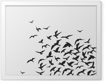 Ingelijste Poster Vogelsachtergrond