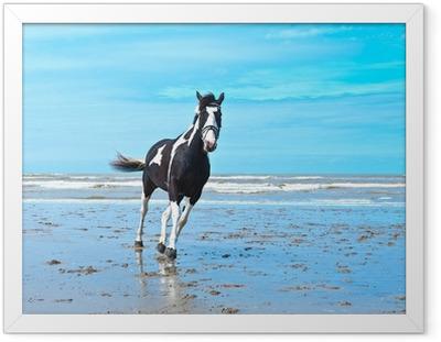 Hevonen Kehystetty juliste