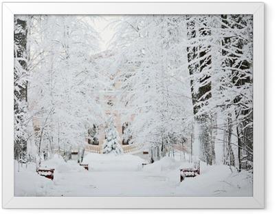 Ingelijste Poster Koude winter forest landschap sneeuw