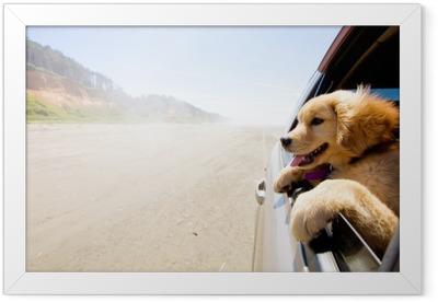 Gerahmtes Poster Welpe, der aus dem Fenster eines Autos schaut