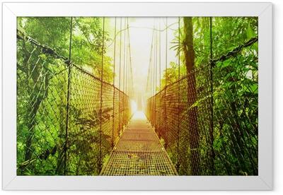Poster en cadre Arenal Hanging Bridges parc du Costa Rica - Thèmes
