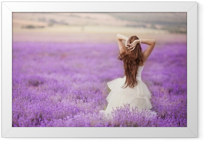 Bride in wedding day in lavender field Framed Poster