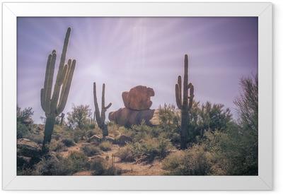 Gerahmtes Poster Wüste Felsbrocken Saguaro Kaktus Baumlandschaft