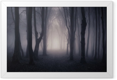 path through a dark forest at night Framed Poster