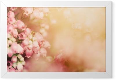 Póster Enmarcado Flores de brezo en una caída, otoño prado de brillante sol settng