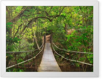 Bridge to the jungle, Thailand Framed Poster