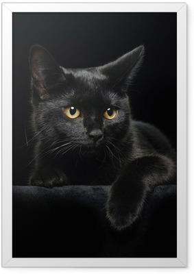 Poster en cadre Chat noir avec des yeux jaunes