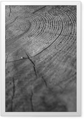 Træ Indrammet plakat