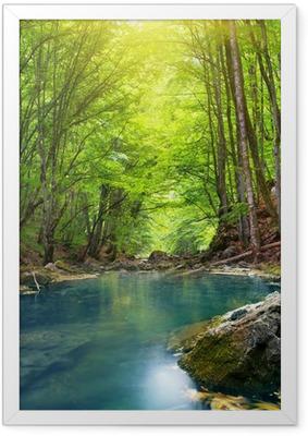 Poster en cadre Rivière en forêt de montagne. - Thèmes