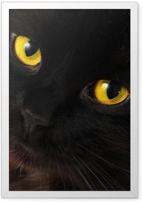 Poster en cadre Black cat qui cherchent à vous avec des yeux jaunes lumineux