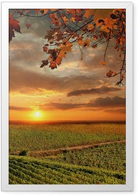 Gerahmtes Poster Vine Landschaft in Chianti, Italien