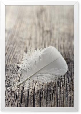 Poster en cadre Plume blanche