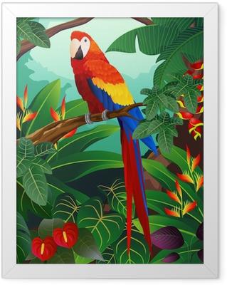 Detaljeret Macaw Bird Vector Indrammet plakat