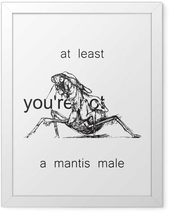 Póster Enmarcado At least you're not a mantis male -