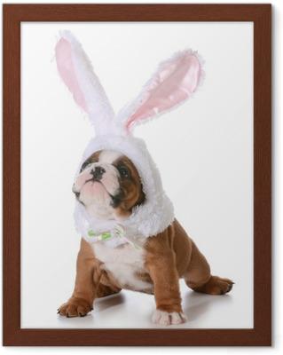 Lerretsbilde Bulldog bunny • Pixers® - Vi lever for forandring 2b730904c84b2