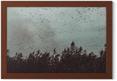 Gerahmtes Poster Haufen Vögel der Nähe von Zuckerrohr in einem dunklen Himmel-Vintage-Stil schwarz und weiß fliegen