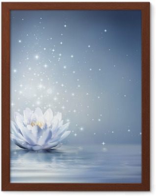 waterlily light blue on water - fairytale background Framed Poster