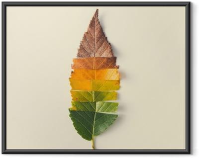 Ingelijste Poster Creatieve lay-out van kleurrijke herfstbladeren.