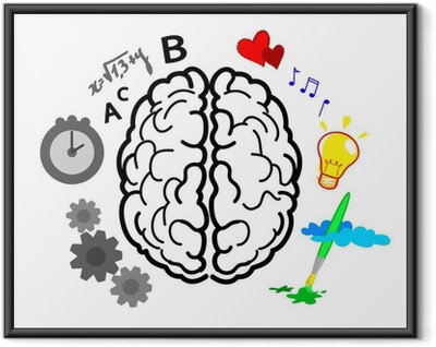 Caratteristiche degli Emisferi cerebrali Framed Poster